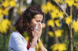 An end to allergies?